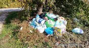 Rifiuti abbandonati a Pieve di Soligo: si cercano i colpevoli - Oggi Treviso