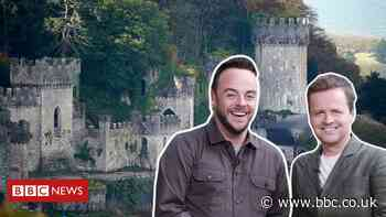 I'm A Celeb: The man teaching Ant and Dec to speak Welsh