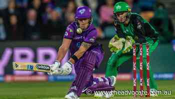 Hobart Hurricanes' BBL home engagements grow for BBL10 - The Advocate
