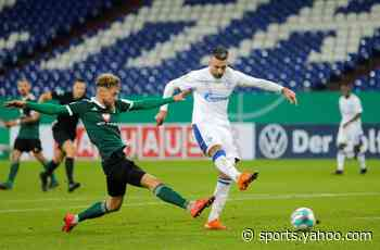 Struggling Schalke sack Ibisevic, suspend Harit, Bentaleb