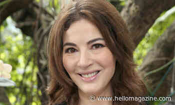 Nigella Lawson's photo sparks major controversy among foodies