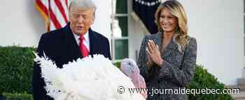 Donald Trump gracie la dinde « Maïs » pour Thanksgiving