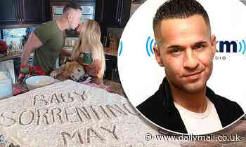 Jersey Shore star Mike 'The Situation' Sorrentino reveals wife Lauren is pregnant