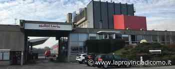 Alzate, operaio cade da 5 metri Ricoverato a Varese: è grave - La Provincia di Como