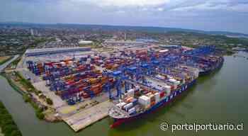 Grupo Puerto Cartagena realiza primer envío de ñame del Carmen de Bolívar a la Unión Europea - PortalPortuario