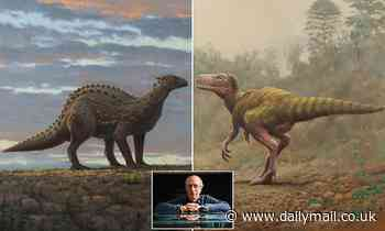 Din O'Saurs discovered! Ireland's first dinosaur fossils are found in County Antrim