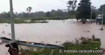 Juradó está inundado en un 80%: siembras y animales quedaron bajo el agua - Noticias Caracol