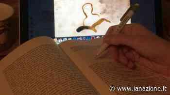 La biblioteca di Gambassi Terme consegna a domicilio: come fare - LA NAZIONE
