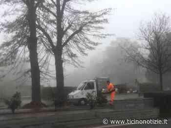 Magenta: Via Novara rifiorisce tra le nebbie novembrine - Ticino Notizie