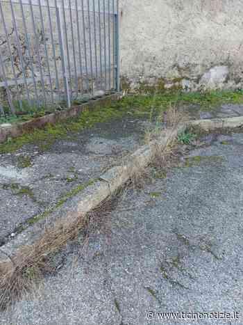 Pontevecchio di Magenta, un residente: il degrado di via Marinelli - Ticino Notizie