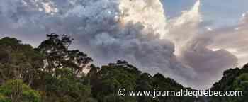 [BALADO] Les feux en Australie ont modifié le ciel