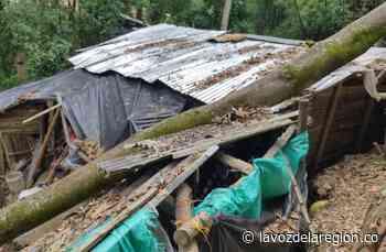 Saladoblanco, uno de los municipios con mayores afectaciones por invierno - Noticias