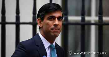 Rishi Sunak accused of 'pork barrel' politics over levelling up scheme