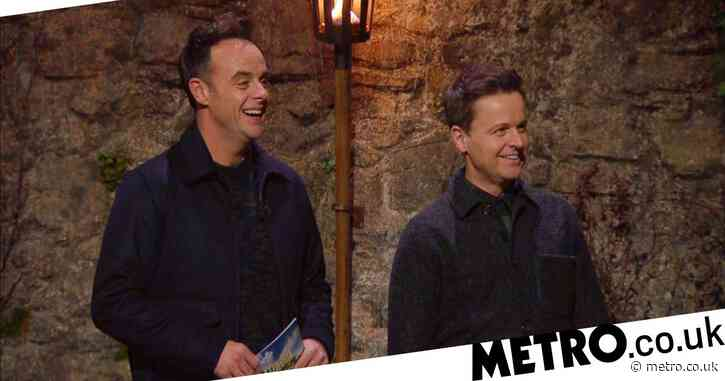 I'm A Celebrity 2020: Who is the couple teaching Ant and Dec how to speak Welsh?