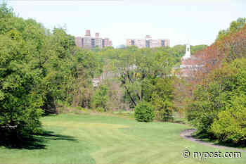 Severely decomposed body found in wooded area on Bronx golf course - New York Post