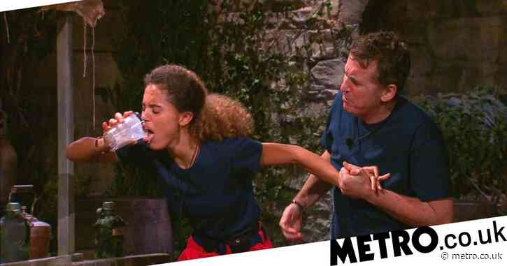 I'm A Celebrity 2020: Ant and Dec tease Shane Richie and Jess Plummer trial is 'funniest in 20 years'