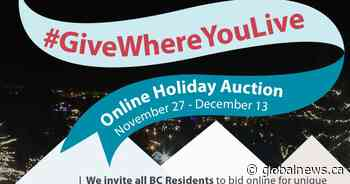 Eagle Ridge Hospital Foundation – #GiveWhereYouLive – Online Holiday Auction