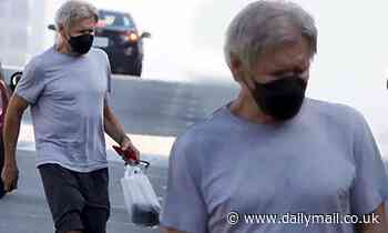 Harrison Ford wears a black face mask as he grocery shops before Thanksgiving