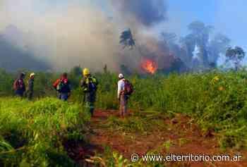 El fuerte viento y la falta de humedad complican la tarea de los bomberos en los incendios - EL TERRITORIO