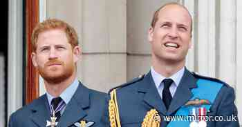 Prince Harry 'supported by William and Charles' after wife Meghan's miscarriage