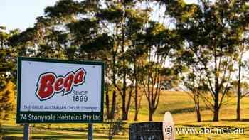 Bega Cheese buys Lion Dairy from Japan's Kirin
