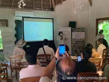 """""""Tulum Ruta Mágica"""" impulsará comercios en Tulum-Bacalar - Cancún Mio"""