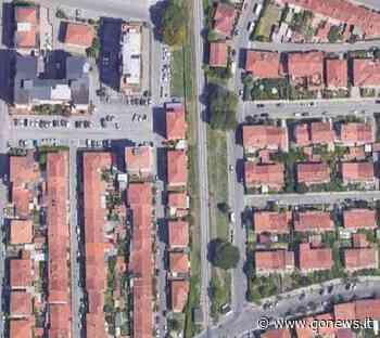 Area sgambatura e nuovi alberi in via Mameli a Pistoia - gonews