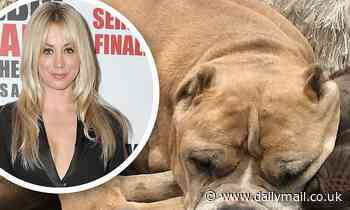 Kaley Cuoco and her husband Karl Cook grieve as their elderly rescue dog Petunia dies
