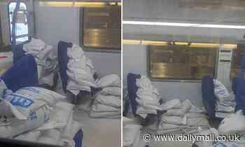 Melbourne new train loaded with bags of SALT pulls up at Flinders Street station, video on Reddit