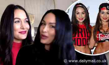 Nikki and Brie Bella reveal they're serious about returning to the WWE
