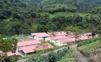 Denuncian asesinato de joven desmovilizada de las Farc en Atrato, Chocó - El País