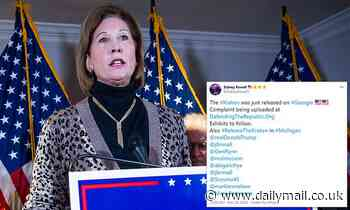 Fired Trump lawyer Sidney Powell releases lawsuits which she claims show 'massive electoral fraud'