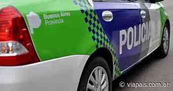 Secuestran 55 plantas de marihuana en un sótano en Los Polvorines - Vía País