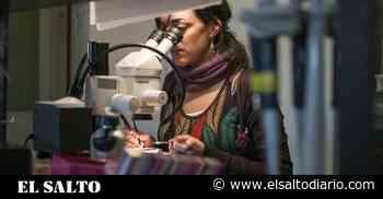 Las diferencias entre las pruebas de detección del coronavirus, ¿cuál y para qué? - El Salto