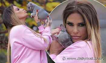 Katie Price looks delighted as she plants kisses on her SECOND new puppy
