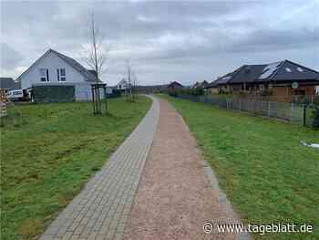 Harsefelds CDU-Fraktion setzt auf blühende Landschaften - TAGEBLATT - Lokalnachrichten aus Harsefeld. - Tageblatt-online