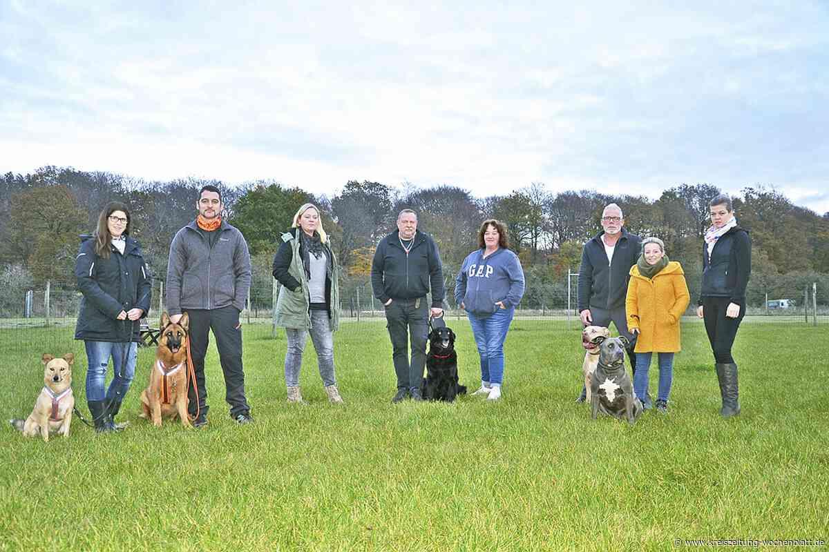 Start für den Hundespielplatz in Harsefeld am neuen Standort: Toben und Spielen für jeden Hund - Harsefeld - Kreiszeitung Wochenblatt