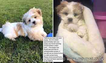 Stranger tells woman they have her missing puppy but won't return it