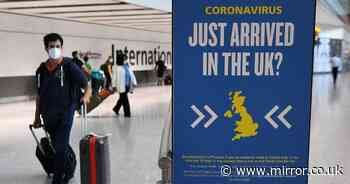 Passenger arrivals to UK drop by 78.8 million - costing 'almost £24 billion'