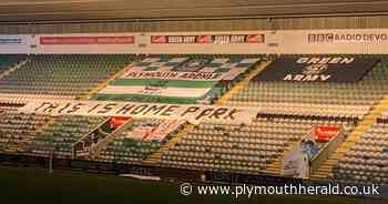 Appeal for more Plymouth Argyle flags to be displayed in Devonport End - Plymouth Live