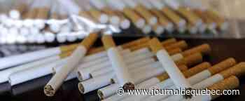 Interceptés avec près de 750 kg de tabac illégal: des amendes totalisant 223 000 $ pour deux Ontariens