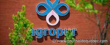 Agropur licencie une vingtaine de personnes en informatique