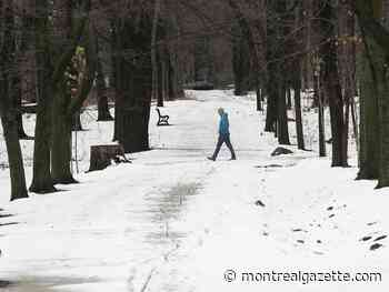 Trails, rinks, lights: Plante urges Montrealers to 'get outside'
