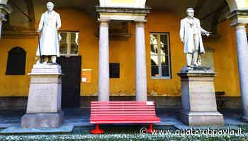 Panchina rossa all'Università di Pavia per dire no alla violenza sulle donne - Quatarob Pavia