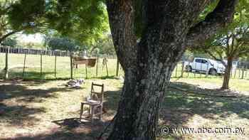 Asesinan a guardia de seguridad en una estancia de Mbuyapey - Nacionales - ABC Color