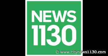Fire in Indian hospital kills 5 coronavirus patients - NEWS 1130 - News 1130