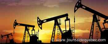 Pandémie, pétrole bon marché: la soif de biocarburants cale pour la première fois en 20 ans