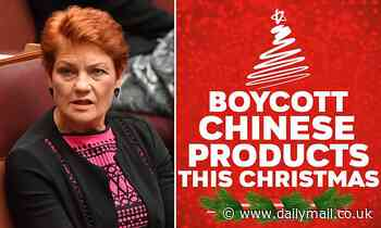 One Nation's Pauline Hanson urges Australians to boycott Chinese products this Christmas