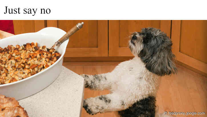 Food safety tips for pet owners to follow during holiday celebrations