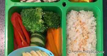 Nursery berates mum for 'unhealthy' lunchbox - but no one can spot the problem